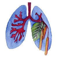 Lungenfachärzte